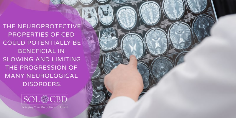 Evidence suggests that CBD could help to encourage healing and minimize neural cell damage.