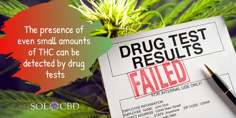 The presence of even small amounts of THC can be detected by drug tests.