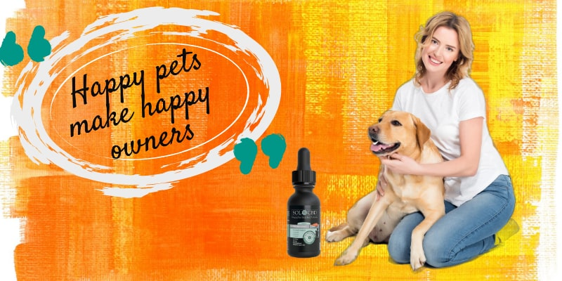 For your pet's overall health, you may use CBD oils to proactively support a healthy diet.