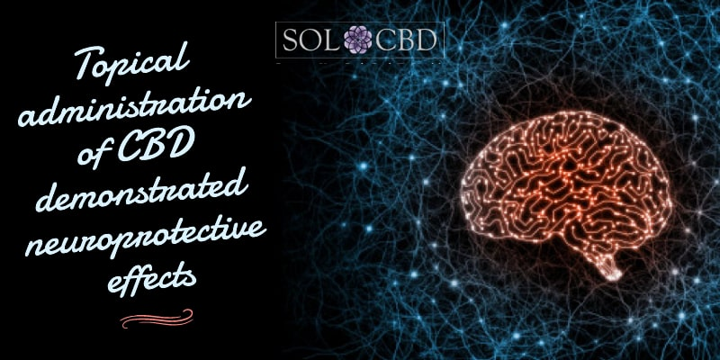 Topical administration of CBD demonstrated neuroprotective effects.