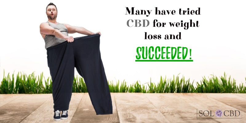 Many have tried CBD for weight loss and succeeded!