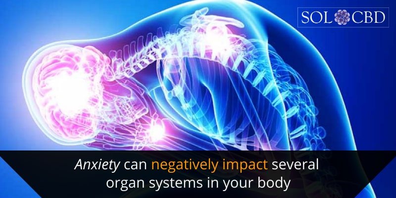 Anxiety can negatively impact several organ systems in your body.