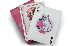 ELLUSIONIST KITTENS