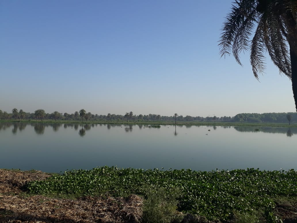 Surajpur Bird Sanctuary - May 2019