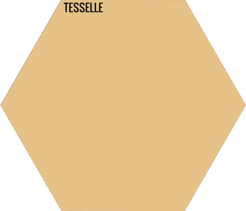 "Marigold 7004 - 9""x8"" Hexagonal Cement Tile"
