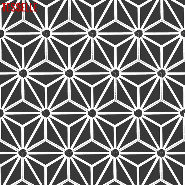 "Orion Sigma 9x8"" Hexagonal Cement Tile 1"