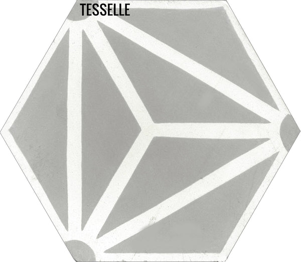 "Orion Theta 9x8"" Hexagonal Cement Tile"