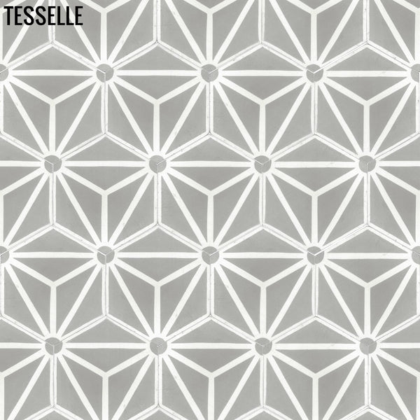 "Orion Theta 9x8"" Hexagonal Cement Tile 1"