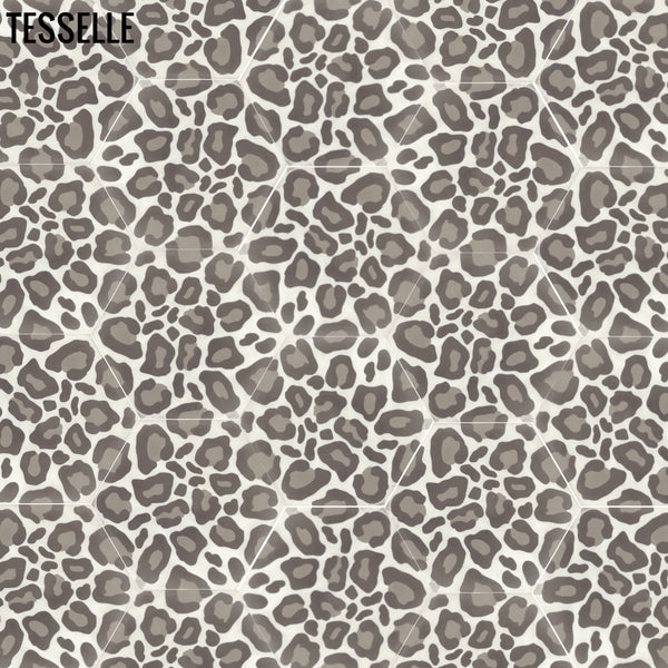 Safari Hexagonal Cement Tiles - Random Layout