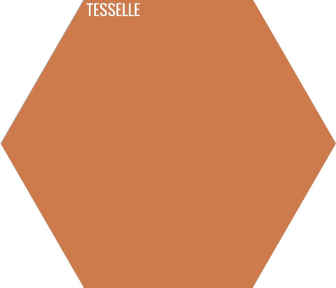 "Tangerine 5006 - 9""x8"" Hexagonal Cement Tile"