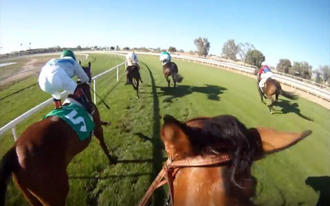 horse racing track betting parimutuel offtrack racing fantasy sports