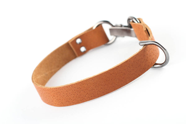 Leather dog collar - WildGood