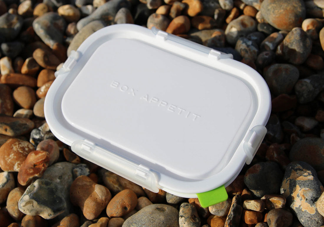 Lunch Box Food Container Rectangle Beach