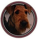 Airedale Terrier dog Photo Jumbo Coaster