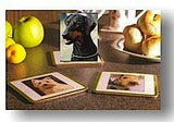 SET of 6 Dobermann Classic Coasters