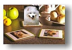 SET of 6 Samoyed dog Drinks Coasters