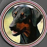 Dobermann Pinscher Jumbo Photo Coaster