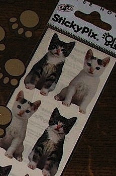 Kittens cat Photo Stickers for card making and hobby craft
