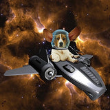 Basset Hound ' Space Cowboy ' Birthday greeting card