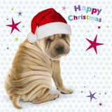 Sharpei puppy dog Charity Christmas Cards Pack of 10