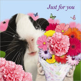 "Guinea Pig ""flowers For You"" Birthday Card"