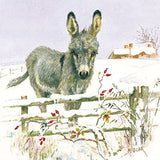 Charity Christmas Cards (MED0195) - Donkey and Rose Hips - In Aid of Marie Cu...