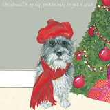 Brock the Cairn Terrier dog in a Tammy Hat Christmas Card - SOLD INDIVIDUALLY