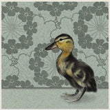 Duckling BLANK baby Duck Greeting Card
