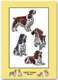 English Springer Spaniel Greeting Card Any occasion BLANK