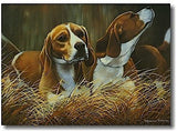 At First Light Beagle Greeting Cards by Pollyanna Pickering