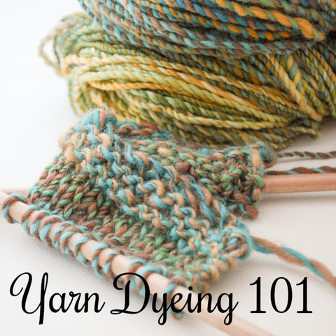 Yarn Dyeing 101 with Donna Hancock at Wellington Fibres - Yarn Club Workshop