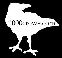 1000crows
