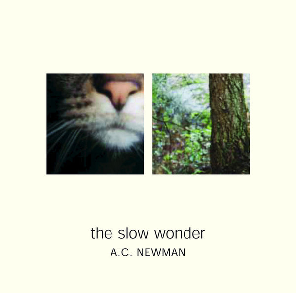 The Slow Wonder