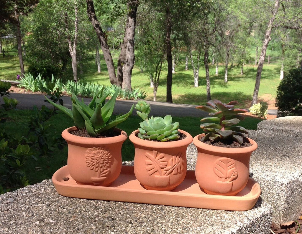 Terra Cotta Clay Set of 3 Small U Shape Embossed Earthenware Planters or Herb Pots and Tray