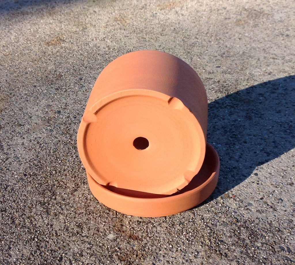 Bulk buy, Natural terracotta color fat walled classic round pots and trays.