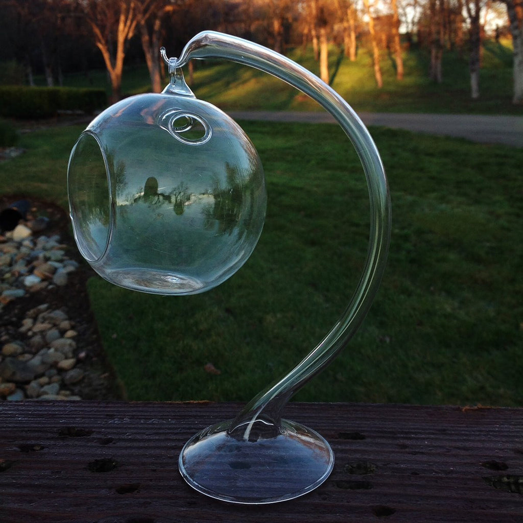 Hanging Round Clear Glass Sphere for Small Succulents with Glass Stand