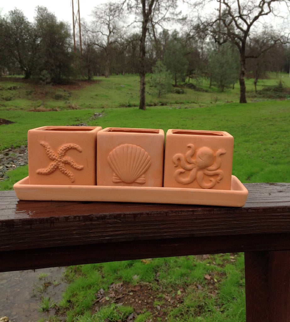Terracotta Clay Set of 3 Small Square Seascape Embossed Herb Square Pots with Tray
