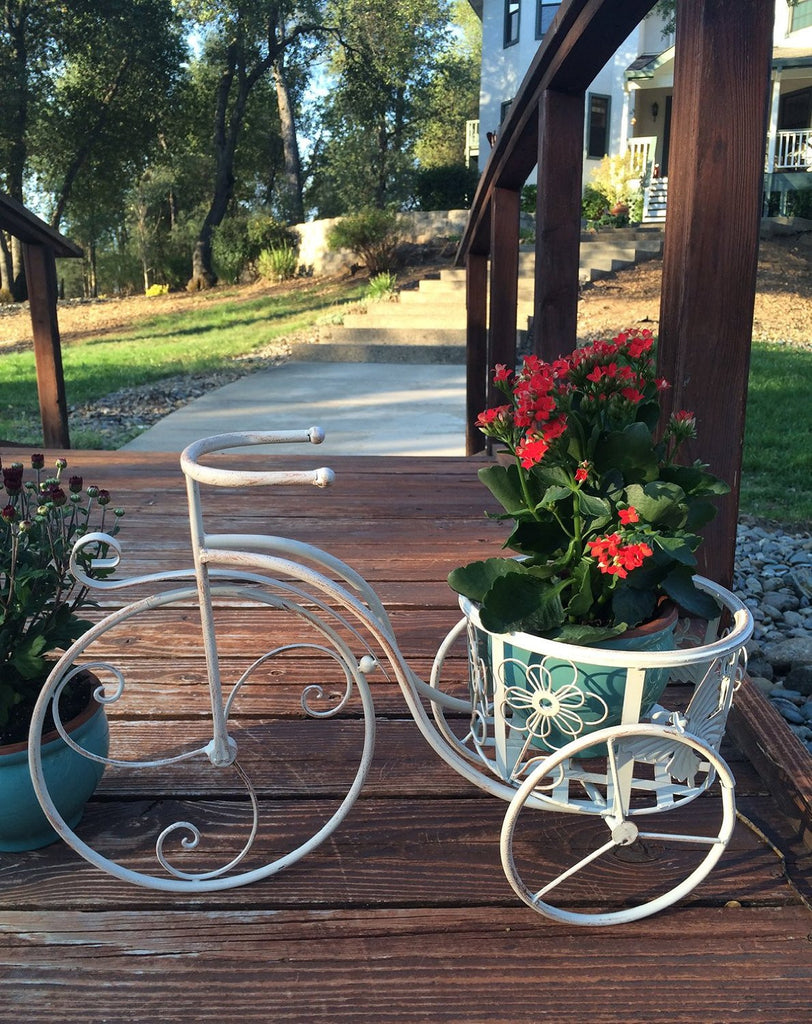 Antique White Iron Tricycle Plant Stand or Planter Holder