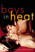 Boys In Heat: Gay Erotic Stories