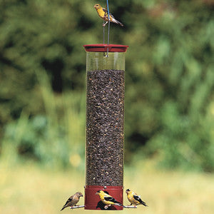 Droll Yankees Dipper Squirrel Proof Bird Feeder