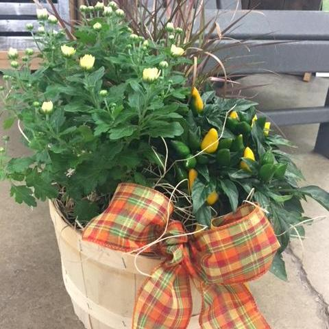 Make your own Fall Basket Planter September 22, 2018