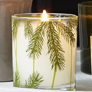 Frasier Fir Pine Needle Candle in Jar