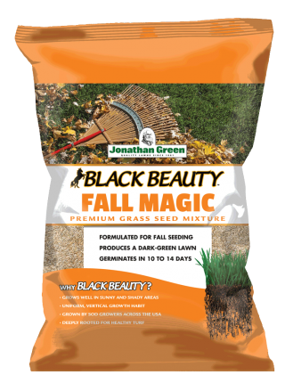Fall Magic Grass Seed by Jonathan Green