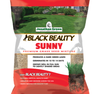 Black Beauty Sunny Grass Seed by Jonathan Green