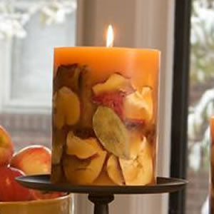 Spiced Apple Botanical Candle
