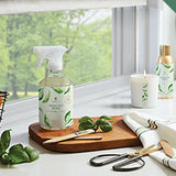 Fresh-Cut Basil Products by Thymes