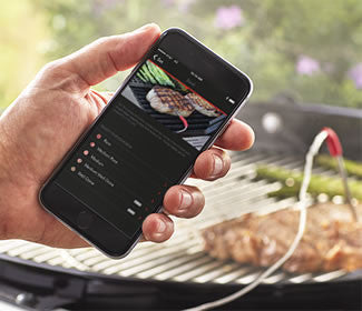 Weber iGrill Mini Thermometer