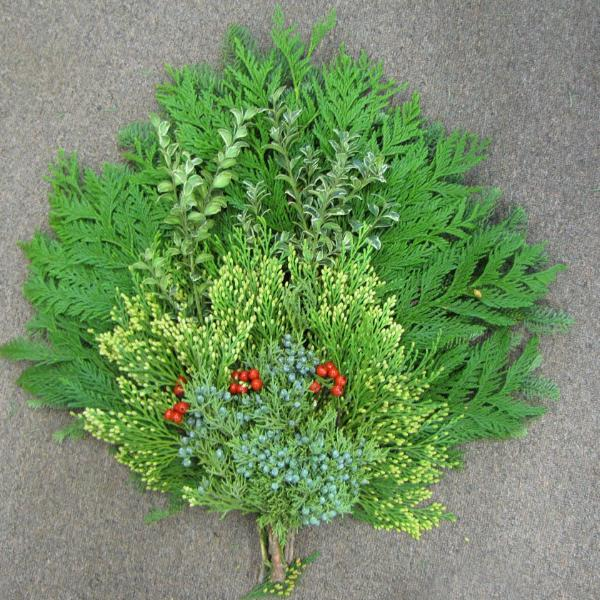 "18-20"" Swag of Fresh Evergreens and Berries"