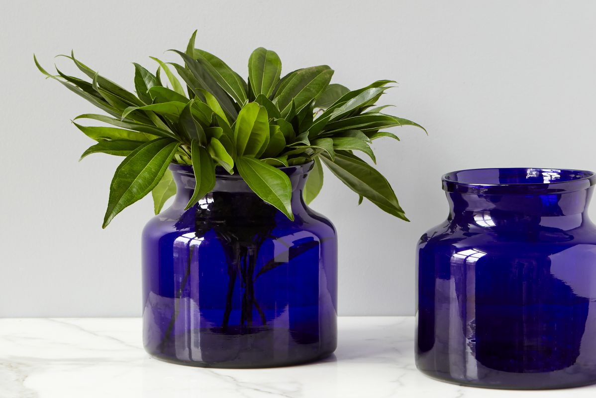 Glass accents europe2you blue flower vase reviewsmspy