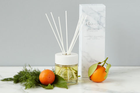 Diffuser, Valencia, Orange+Fennel